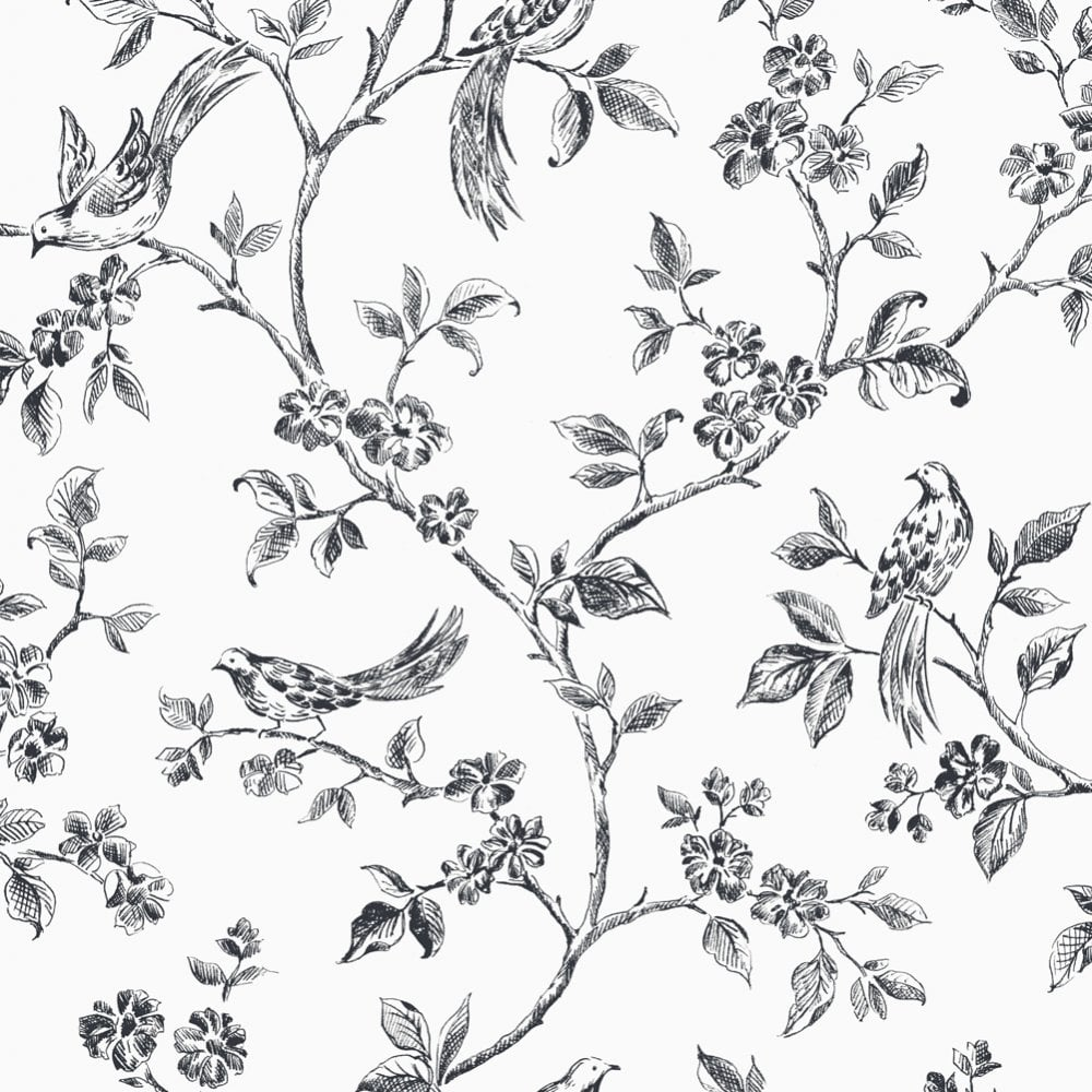 Fine Decor Birds From Live Laugh Love Collection White Black Fd40289 Wallpaper From I Love Wallpaper Uk